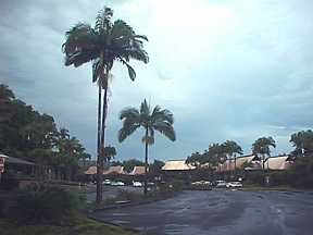 Hawaii Live Camera